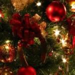 christmas-tree-decorations-christmas-tree-christmas-picture-christmas-tree-decorations-1024x640-300x188